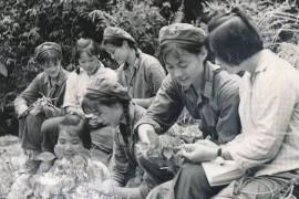怀念毛泽东时代——令人难忘的高中学生生活