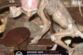 恐怖农民捕获外星人婴儿视频照片真相曝光分析