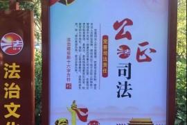点赞海口!遮盖毛主席像的宣传画已更换,问责两名干部