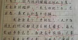 推荐一位江苏红色网友读四年级的女儿写的作文《我的爸爸》!写的很好,写的很棒!